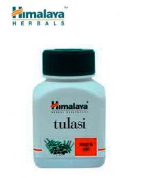 Tulasi - Holy basil