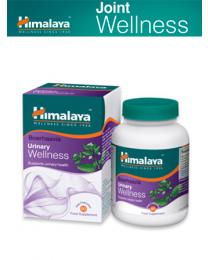 Boerhaavia Wellness - 60 cápsulas